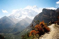 Circuit India de Nord - Nepal 12 zile