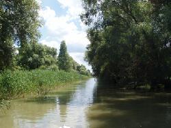 Craciun Dunavatu de Jos