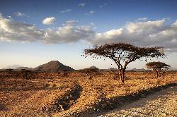 Sejur Kenya Coasta de Sud