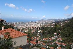 Paste Madeira