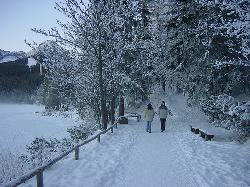 Ski Strbske Pleso