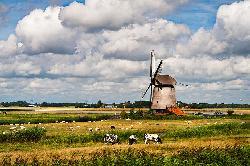 Circuit Olanda si Belgia 5 zile