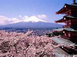 Japonia - Sarbatoarea Ciresilor in floare