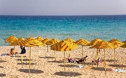 Cipru pentru toti