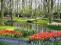 Oferte 1 Mai Olanda