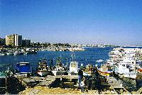 Paste Cipru