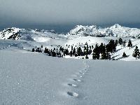 Oferte Ski Slovenia